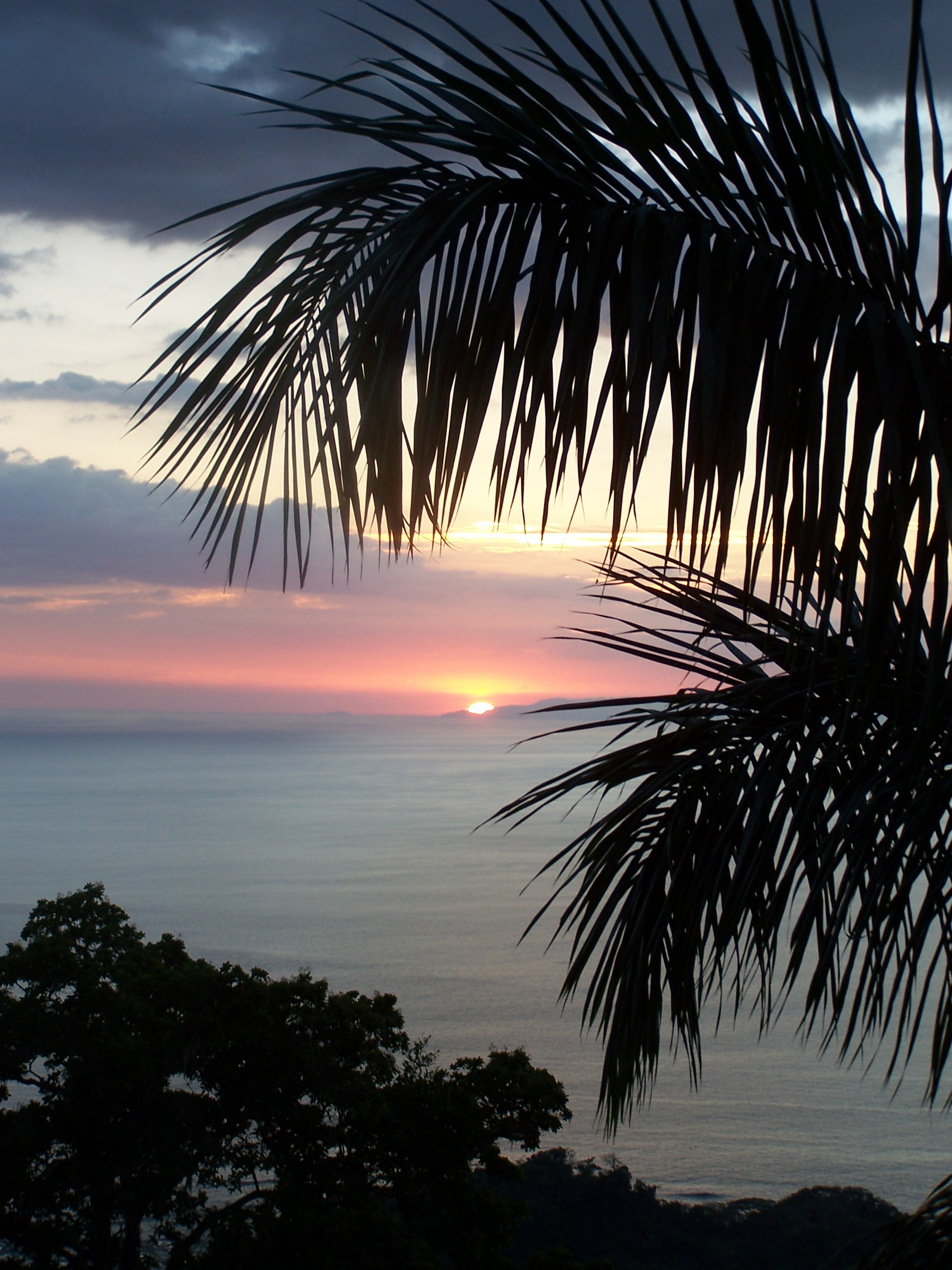 "Pura Vida, ""Pura Life"".  Hermosa Beach, Costa Rica"